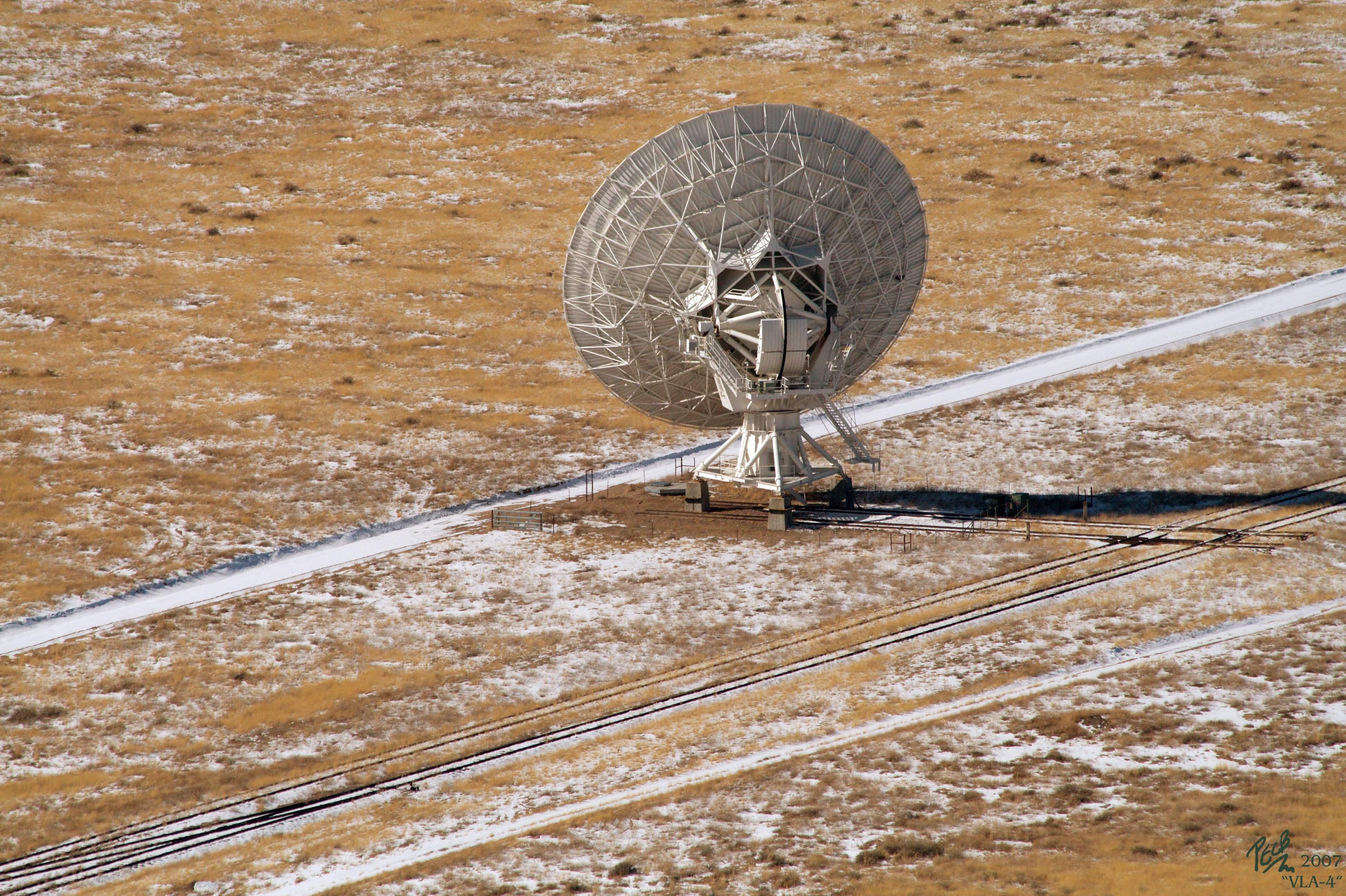 VLA-4-VLA-113-IMG_9519-v2