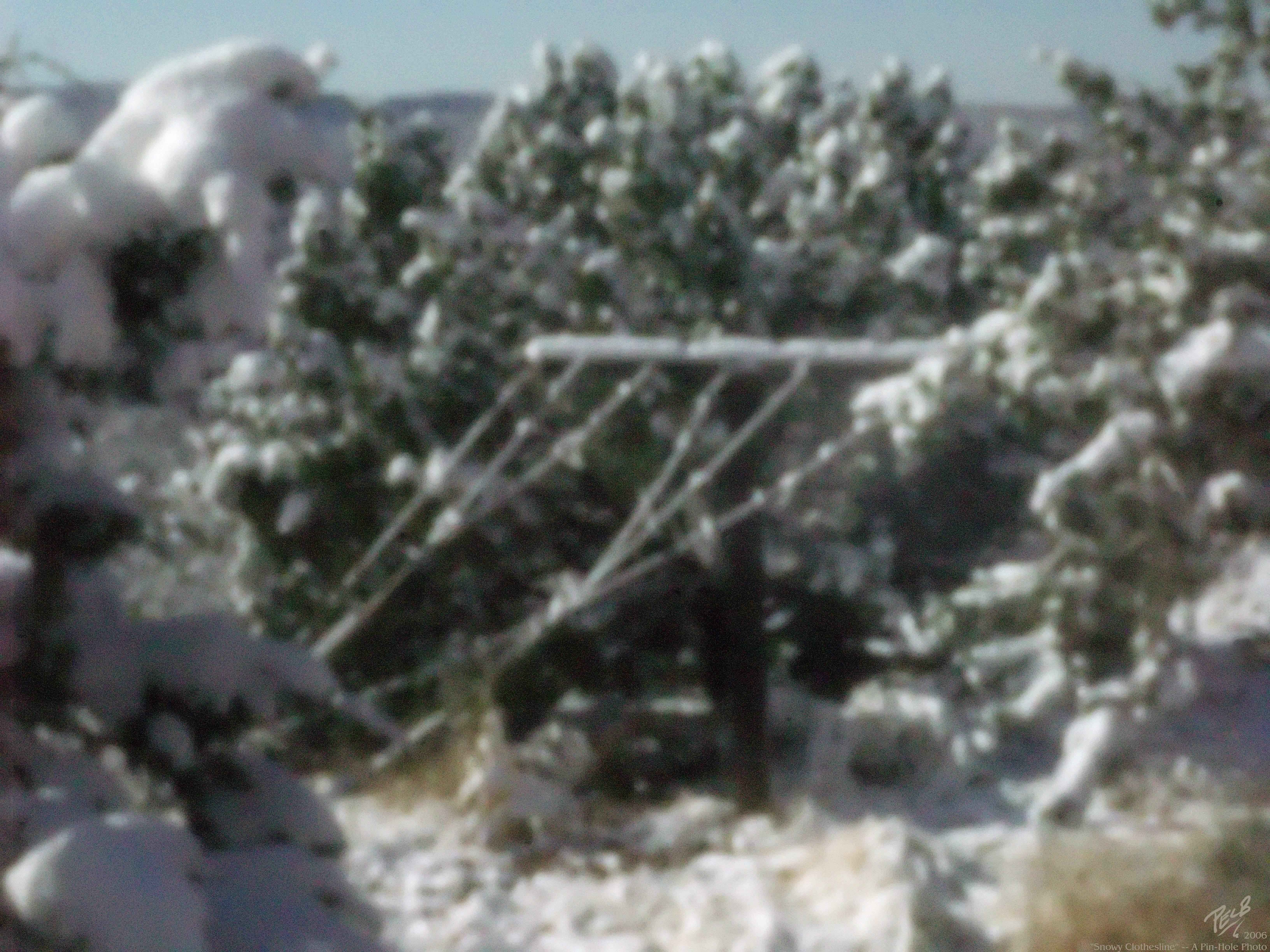 SnowyClothesline